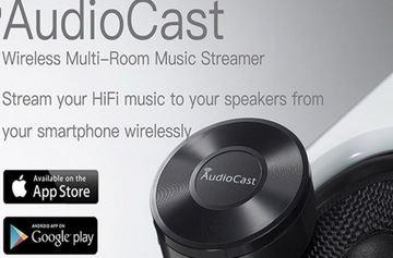 3. Audiocast Wireless WiFi Audio Receiver multiroom